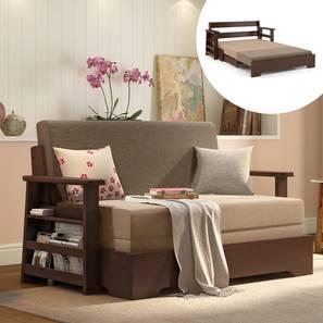 Oshiwara Compact Sofa Cum Bed (Dark Walnut Finish, Two Tone) by Urban Ladder