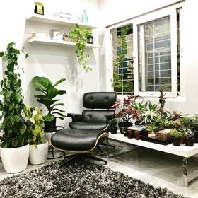 """""""Finally!!! created my cozy corner by the window and my beautiful plants.  So this is where I read, journal & have my morning and evening tea  #chai #cozycorner #journal #readingnook #surroundedbyplants #plantaddict #mondaymotivation #Urbanladder """""""