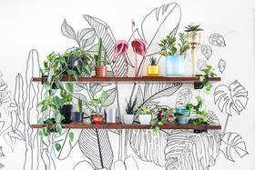 Newly rearranged #shelfie to prevent the heat from killing my plant children. #UrbanLadder !! :P