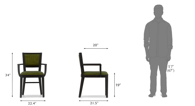 Aurelio study chair mahogany oive new dim 12