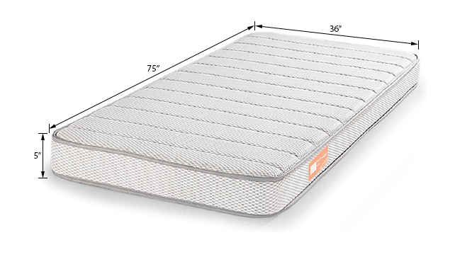 TheraMedic Comfort Mattress (Single Mattress Type, 75 x 36 in Mattress Size, 5 in Mattress Thickness (in Inches)) by Urban Ladder