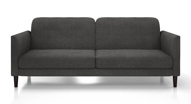 Felicity Sofa Cum Bed (Grey) by Urban Ladder - Front View Design 1 - 134375