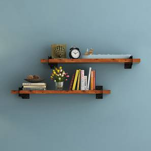 Ryter shelves 00 lp
