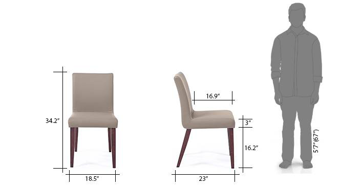 Persica dining chair dimension
