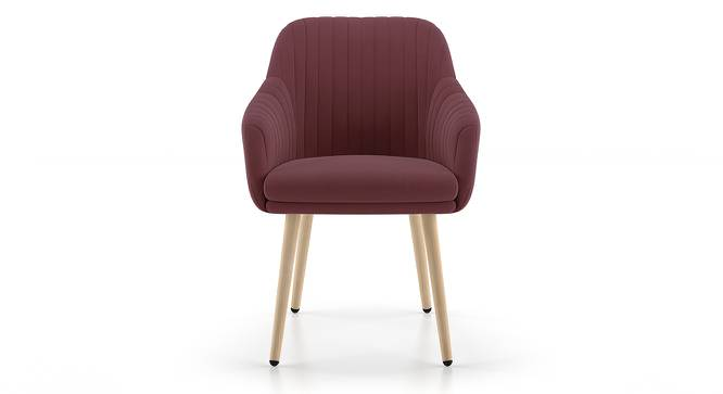 Rochelle Lounge Chair (Purple) by Urban Ladder
