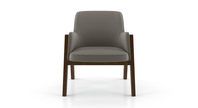 Carven Lounge Chair (Dark Grey) by Urban Ladder - Front View Design 1 - 162606