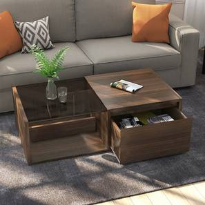 Alita storage coffee table half lp
