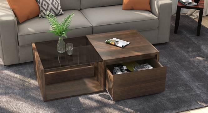 Alita Storage Coffee Table (Walnut Finish, Half Drawer Configuration) by Urban Ladder - Design 1 Full View - 162726