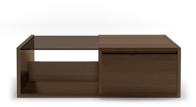 Alita Storage Coffee Table (Walnut Finish, Half Drawer Configuration) by Urban Ladder - Front View Design 1 - 162727