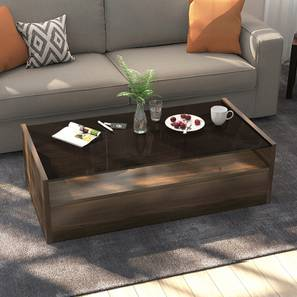 Alita storage coffee table full lp