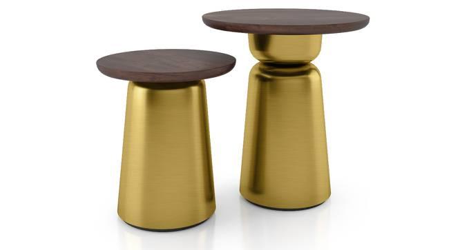 Ebisu Side Table Set (Brass) by Urban Ladder