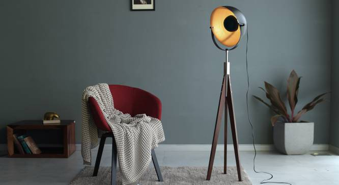 Winnipeg Floor Lamp by Urban Ladder - Design 1 Full View - 203346