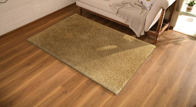 "Sherwood Super Soft Shaggy Rug (Brown, 122 x 183 cm  (48"" x 72"") Carpet Size) by Urban Ladder - Design 1 Full View - 219599"