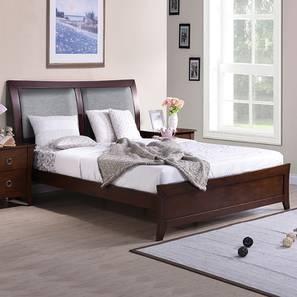 Packard bed lp