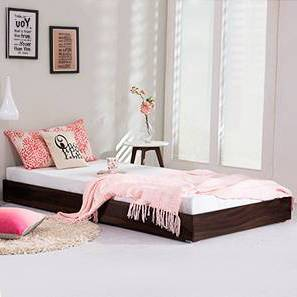Merritt Trundle Bed (Mahogany Finish, Single Bed Size) by Urban Ladder - Design 1 Full View - 235573