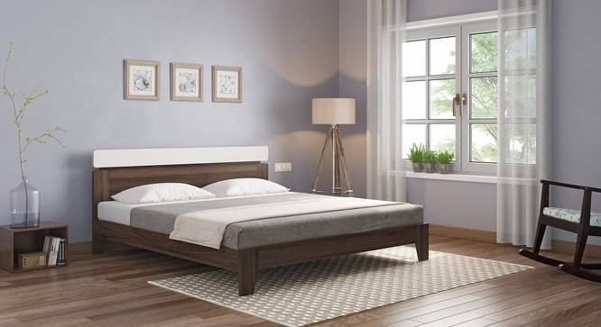 Aruba Bed (Two-Tone Finish, Queen Bed Size) by Urban Ladder