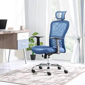 Venturi Study Chair-3 Axis Adjustable (Aqua) by Urban Ladder