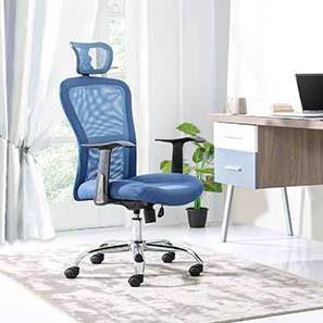 Venturi Study Chair-3 Axis Adjustable (Aqua) by Urban Ladder