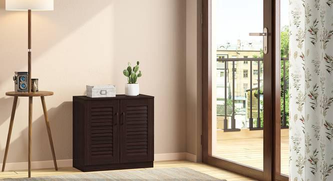 Bennis Shoe Cabinet (Dark Walnut Finish, 9 Pair Capacity) by Urban Ladder
