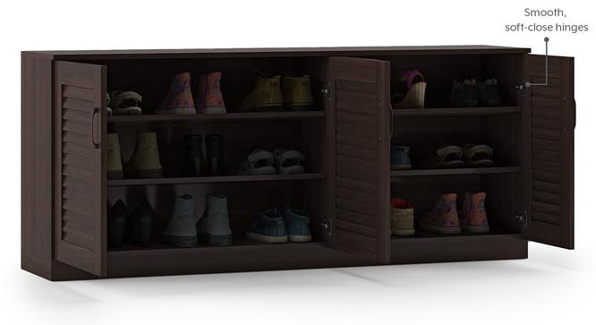 Bennis Shoe Cabinet (Dark Walnut Finish, 18 Pair Capacity) by Urban Ladder