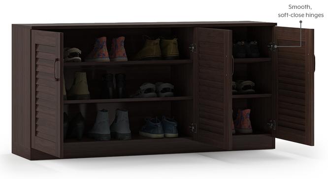 Bennis Shoe Cabinet (Dark Walnut Finish, 21 Pair Capacity) by Urban Ladder