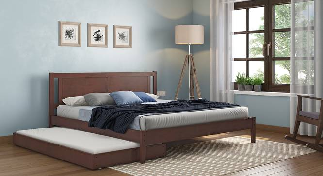 Watson Trundle Bed (Dark Walnut Finish) by Urban Ladder