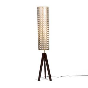 Toliara Floor Lamp (Copper Shade Colour, Dark Walnut Base Finish) by Urban Ladder