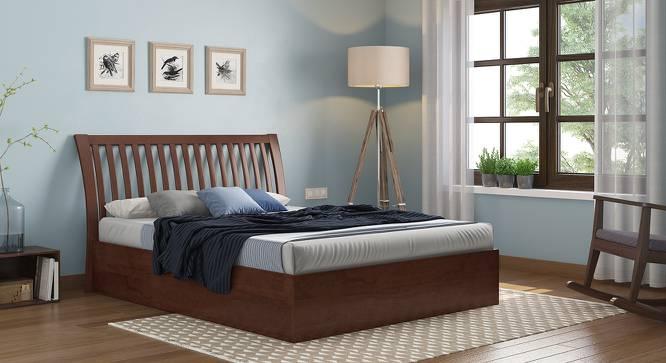 Tanera Hydraulic Bed (Queen Bed Size, Dark Walnut Finish) by Urban Ladder