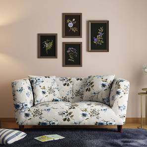 Janet Loveseat (Adrian Velvet) by Urban Ladder