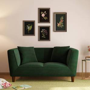 Janet Loveseat (Celadon Green) by Urban Ladder