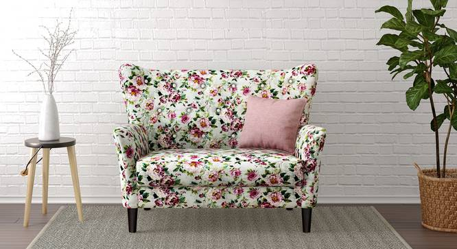 Frida Loveseat (Clara Velvet) by Urban Ladder
