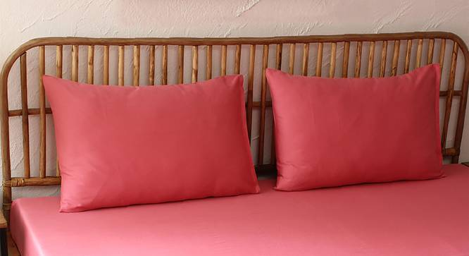 Peach Bedsheet Set (Pink, Fitted Size) by Urban Ladder - Design 1 Full View - 301729