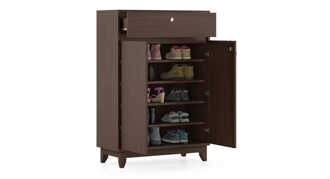 Webster Shoe Cabinet With Lock (15 Pair Capacity, Smoked Walnut Finish) by Urban Ladder - Design 1 Full View - 302094