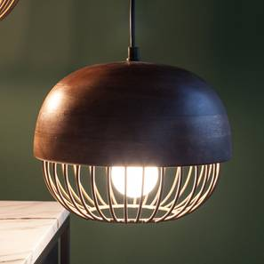 Minya Hanging Lamp (Gold Finish) by Urban Ladder - Design 1 Full View - 302325