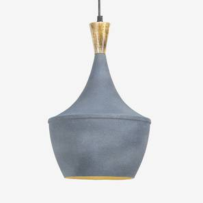 Gris Hanging Lamp (Grey Finish) by Urban Ladder - Design 1 Full View - 302367