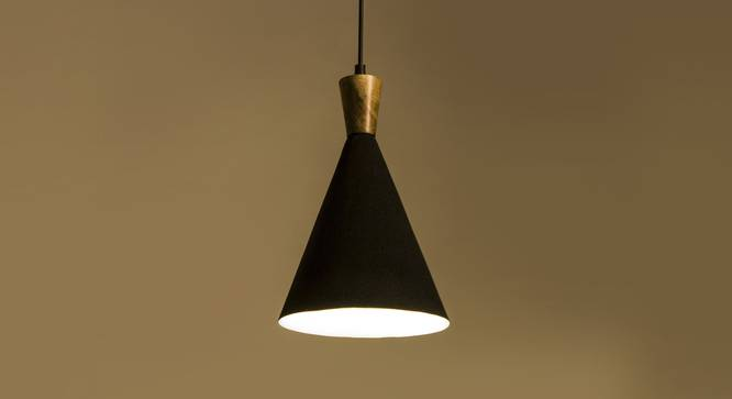 Noir Hanging Lamp (Black Finish) by Urban Ladder - Front View Design 1 - 302374