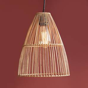 Kaya Hanging Lamp (Brown Finish) by Urban Ladder - Design 1 Full View - 302443