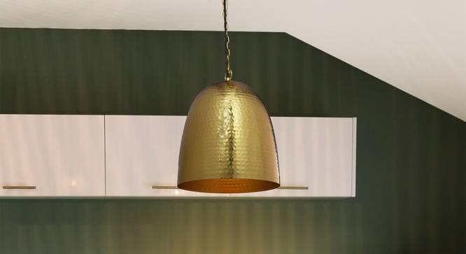 Zaden Pendant (Brass) by Urban Ladder - Half View Design 1 -