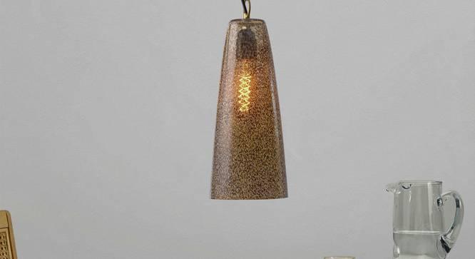 Tigris Hanging Lamp (Printed Finish) by Urban Ladder - Design 1 Half View - 304232