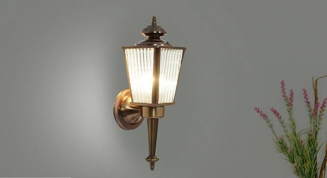 Aine Wall Light (Copper) by Urban Ladder - Half View Design 1 -