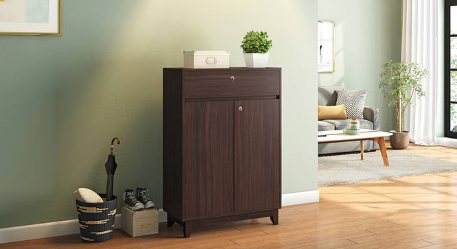 Webster Shoe Cabinet With Lock (15 Pair Capacity, Smoked Walnut Finish) by Urban Ladder - Full View Design 1 - 312041