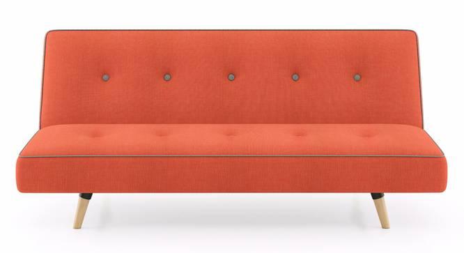 Zehnloch Sofa Cum Bed (Glory Rust) by Urban Ladder - Front View Design 1 - 313352