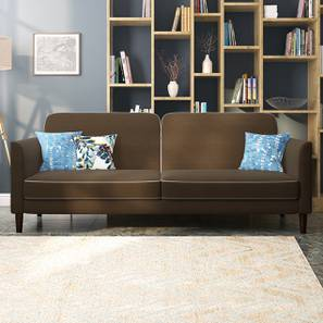 Felicity Sofa Cum Bed (Camila Brown) by Urban Ladder - Design 1 - 313919