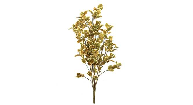 Wild Coffee Artificial Plant (Yellow) by Urban Ladder - Front View Design 1 - 314896