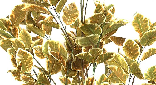 Wild Coffee Artificial Plant (Yellow) by Urban Ladder - Design 1 Side View - 314897