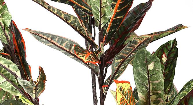 Croton Artificial Plant by Urban Ladder - Design 1 Side View - 314963
