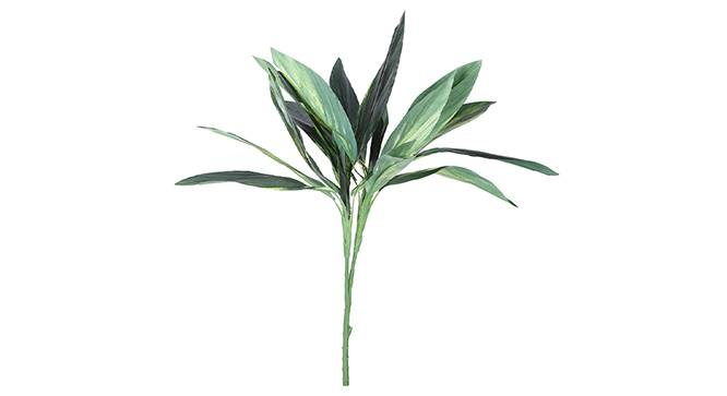 Dracaena Artificial Plant (Green) by Urban Ladder - Front View Design 1 - 314976