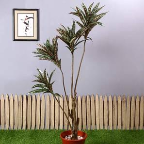 Dracaena brown artificial plant lp