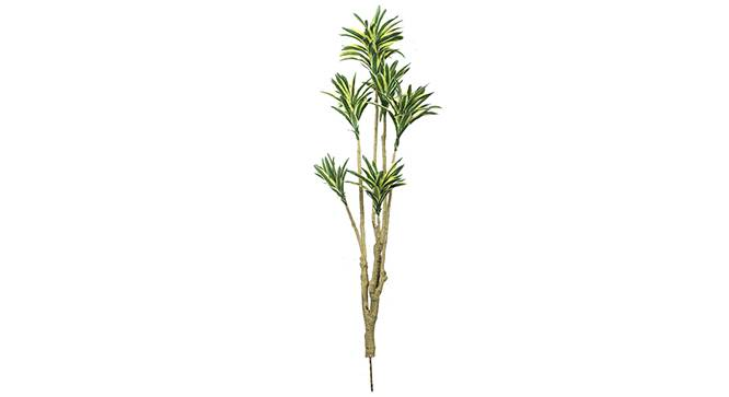 Aletri Artificial Plant (White) by Urban Ladder - Front View Design 1 - 315027