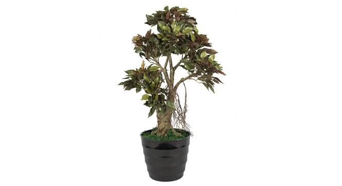 Ficus Artificial Plant (Red) by Urban Ladder - Front View Design 1 - 315039